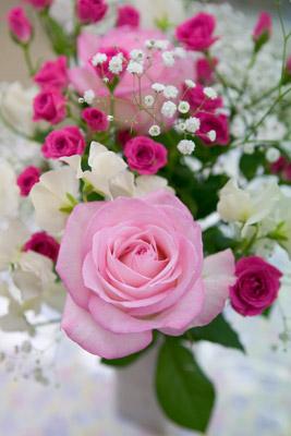 101124flower1_blog