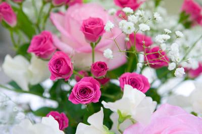 101124flower3_blog
