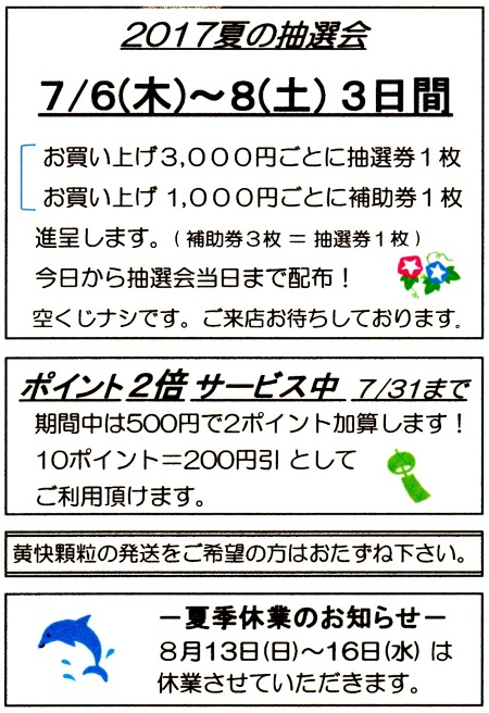 2017summer_info